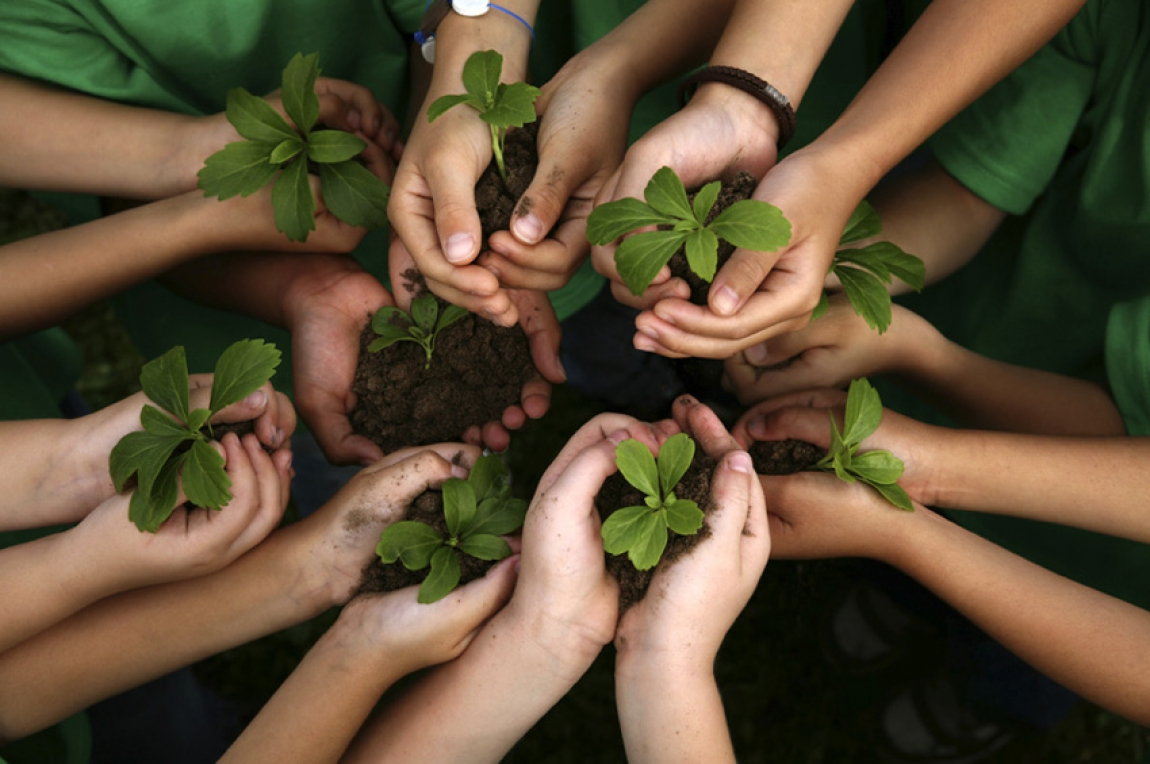 Nueva religión ecologista